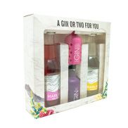 'A Gin or Two For You' Gift Pack